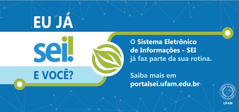 Institucionalização do SEI na UFAM